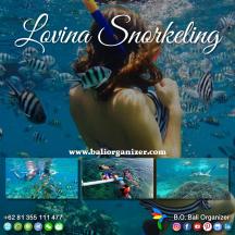 Snorkling Lovina
